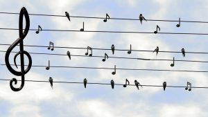Chanter c'est bon pour soi et pour la collectivité