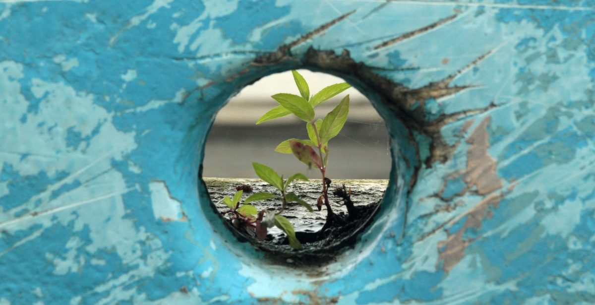 Comment dépasser les traumatismes pour continuer à grandir et avancer ?